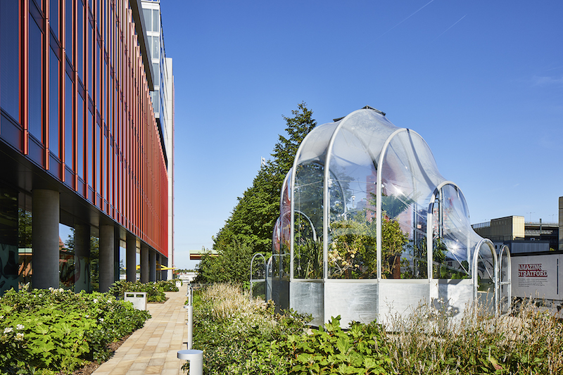 The Hothouse at Stratford